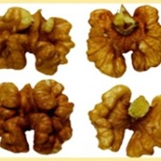 Грецкий орех очищенный высший сорт фото