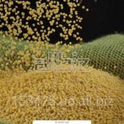 Спрей Мастер использует технологию хранения зерна в полиэтиленовых мешках фото