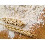 Пшеничная мука высшего сорта фото