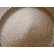Сахар свекловичный фото