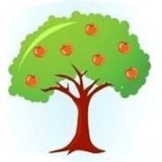 Квалифицированная обрезка деревьев и винограда фото