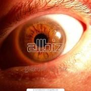 Офтальмологическое обследование и современная диагностика зрения фото