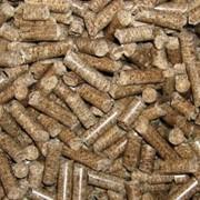 Quality Pine Wood Pellets фото