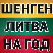Мультивиза Литва 1 год фото