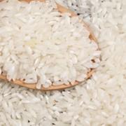 Круглый рис фото