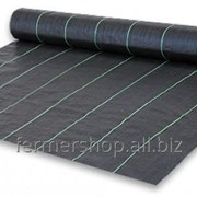 Геотекстиль тканный Agrojutex, плотность 100г/м.кв, размер 1х50м, цвет - чёрный, Чехия фото