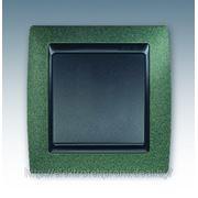 Выключатель 1клавишный, зеленая текстура+графит фото
