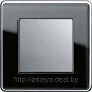 Gira серия Esprit Glass C фото