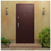 Стальные двери Торэкс cерия Ультра 3 фото