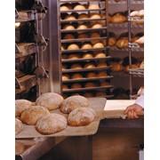 Хлебопекарни фото