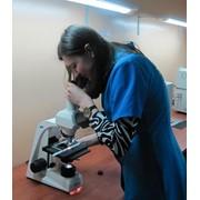 Проведение комплексных испытаний полимерных пленок и термопластических полимерных материалов фото