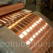 Лента медная 0,55х600 Cu-DHP фото