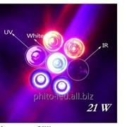 Фитолампа 21W направленного свечения c полным спектром фото