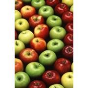 Калибровка свежих овощей и фруктов фото