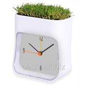Часы настольные Grass фото