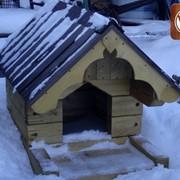 Деревянные будки для собак фото