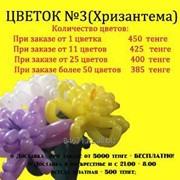 Цветок №3 Хризантема фото