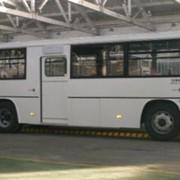 Автобусы, Городской автобус большого класса фото