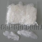 Перья белые пуховые ~5-8см/100 шт 570788 фото