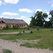 Конюшня в с.Тарасово (4 км.от г.Луцк) фото