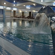 Строительсво бассейнов фото