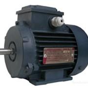 Электродвигатель взрывозащищенный АИМ 80А4 фото