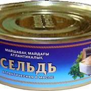 Сельдь атлантическая в масле (консервы рыбные) фото