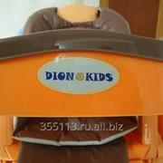Стульчик для кормления Dion Kids RT002 DPS фото