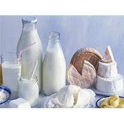 Молочная продукция фото