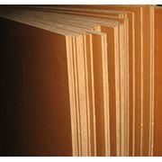 Плита древесноволокнистая ГОСТ 4598-86 фото