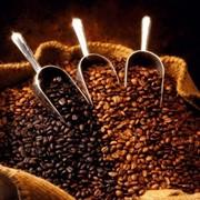 Кофе КУППО!!! фото