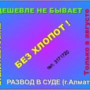 РАЗВОД БЕЗ ХЛОПОТ фото