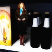 Виртуальный мини промоутер фото