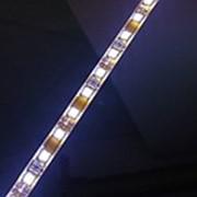 Светодиоды влагозащищенные шаг 1.4 см фото