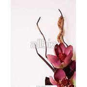 Декоративные искусственные растения фото