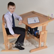Комплект стол и стул школьникам Умничка фото