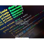 Курсы обучения по программированию в среде интернет фото