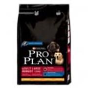 Корм Pro Plan Adult Large Robust для взрослых собак крупных пород 14 кг фото