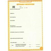 Сертификация ТР ТС фото