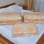 Одеяло 200Х220 шерстяное арт 214 фото