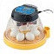 Инкубатор Mini II EX 7 автоматический NEW фото