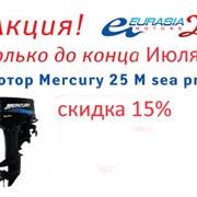 Моторы Mercury sea pro фото