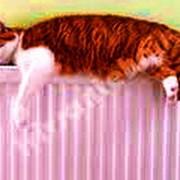 Системы отопления для Вашего комфорта фото