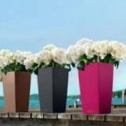 Горшок пластиковый Lechuza Cubico Color матовый (в.44-75 см) фото