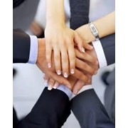 Подбор персонала. Компания Power Pact HR Consulting. фото