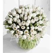 Цветы, тюльпаны к 8 марта фото
