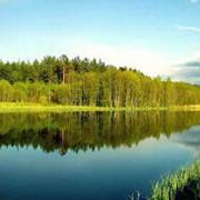 Экскурсия Минск - Брест - Ружаны - Коссово фото