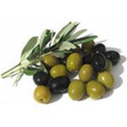 Оливки и маслины консервированные фото
