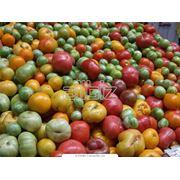 Экспорт фруктовых концентратов различных видов консервированных овощей и фруктов фото