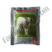 Премикс для коз и овец 0,4 кг Salva Mix фото